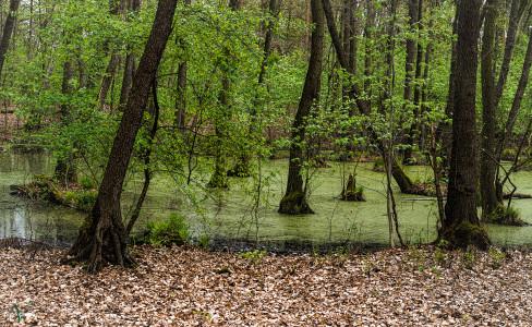 Landschafts Fotografien - Vatinga Photography