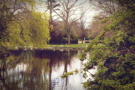 Dublin - Vatinga Photography - Landschaft - 13