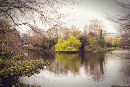 Dublin - Vatinga Photography - Landschaft - 5