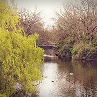 Dublin - Vatinga Photography - Landschaft - Thumbnail