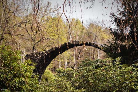 Landschaftsfotos - Rakotzbrücke - Vatinga Photography - 2