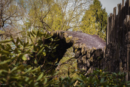 Landschaftsfotos - Rakotzbrücke - Vatinga Photography - 4